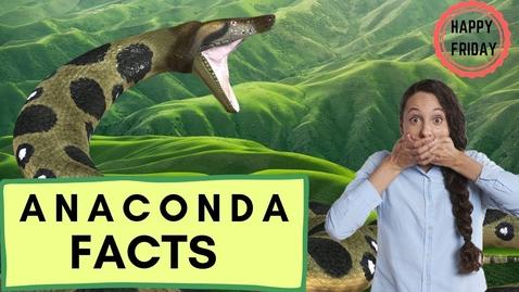 Thumbnail for entry Fun Anaconda Facts!