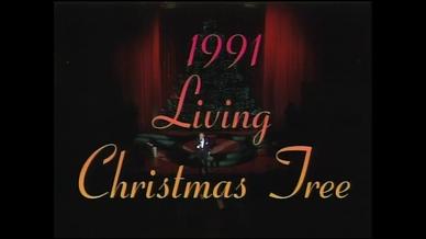 The Christmas Tree 1991.The 1991 Living Christmas Tree This Magnificent Season