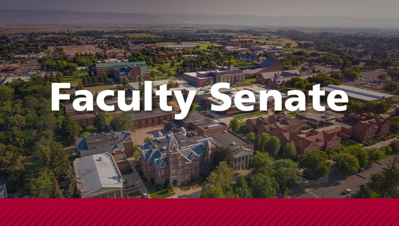 Live Stream: Faculty Senate