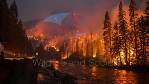 Thumbnail for entry Wildfire and Society Conference (Panel Two with Discussion)