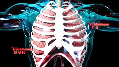 內容項目 呼吸博士實驗室(身體的奧秘──呼吸系統篇) 的縮圖