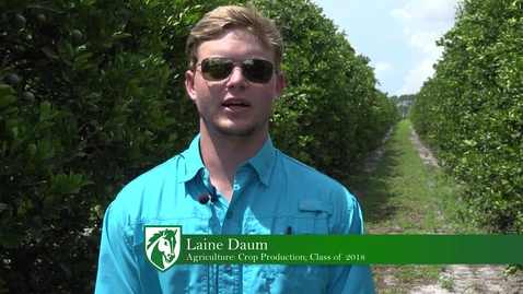 Thumbnail for entry Laine shares his internship with Florida citrus!