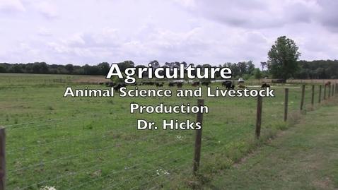 Thumbnail for entry Livestock