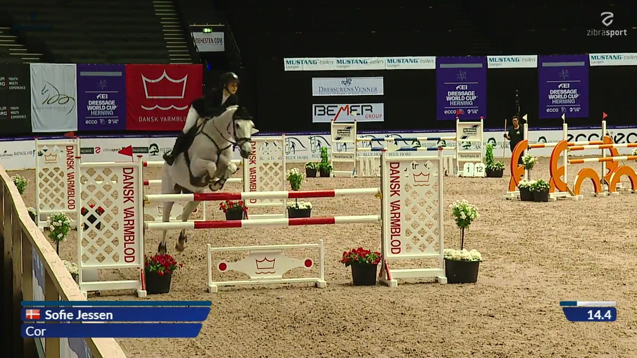 CSI1* Small Tour presented by Equitour (1,25 m) fra World Cup Herning 2019