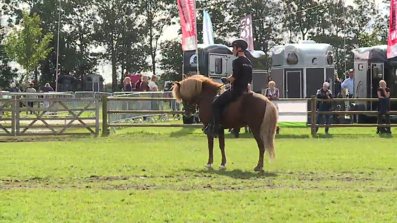Clinic about training of Icelandic Horses  at Store Hestedag 2019
