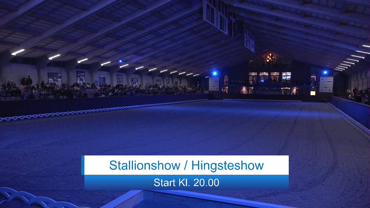 Stallion show at Blue Hors Dressurfestival 2019