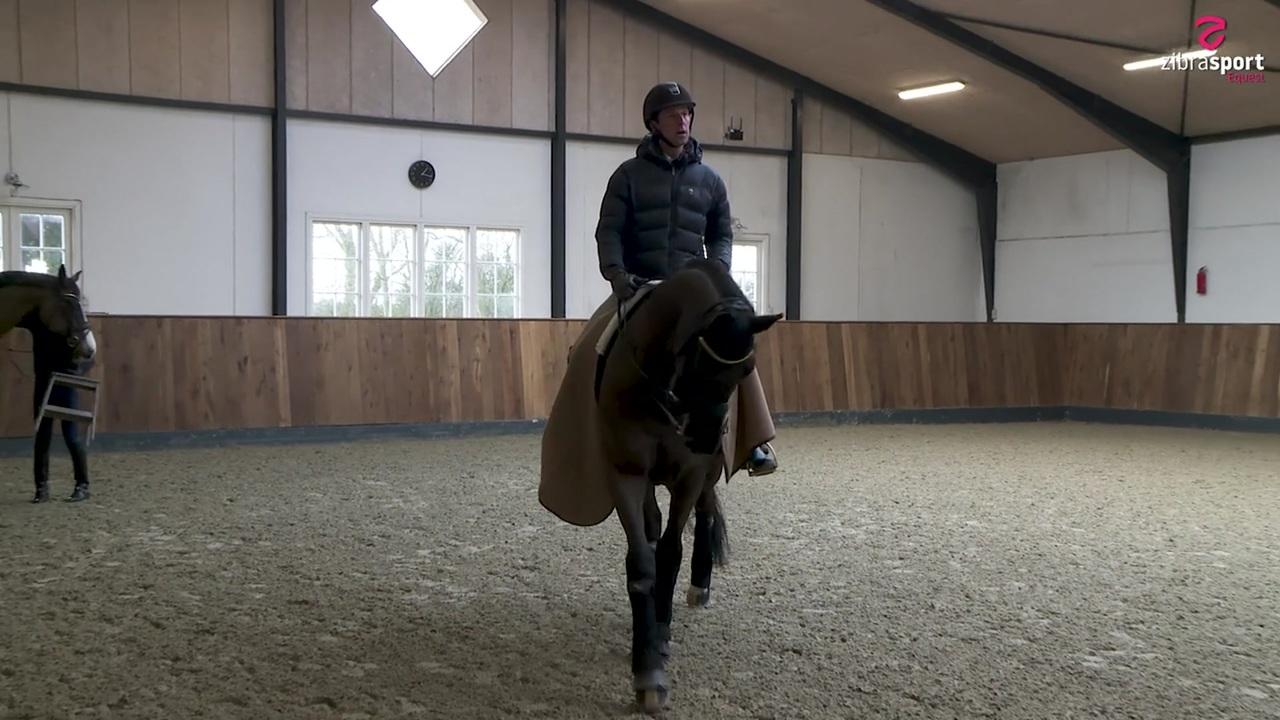 Dennis Fisker om motivering af hesten