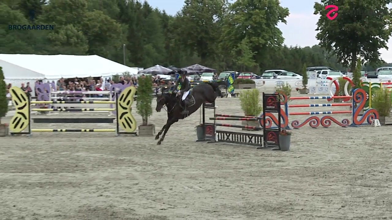 2. part of S1* (145 cm) at Riders Cup