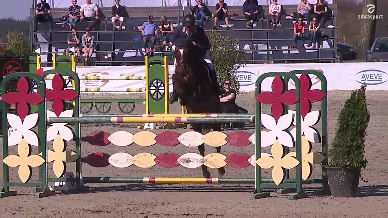 MB2** (130 cm) at Riders Cup 2019