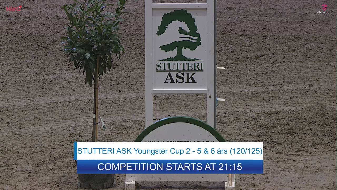 Youngster Cup 2 for 6 yr-old horses at Danish Christmas Show 2019