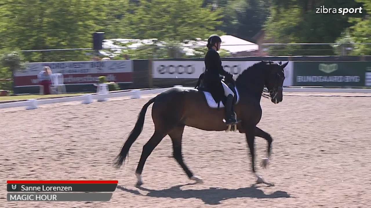 2nd part of Prix St. George at Broholm Horseshow 2018
