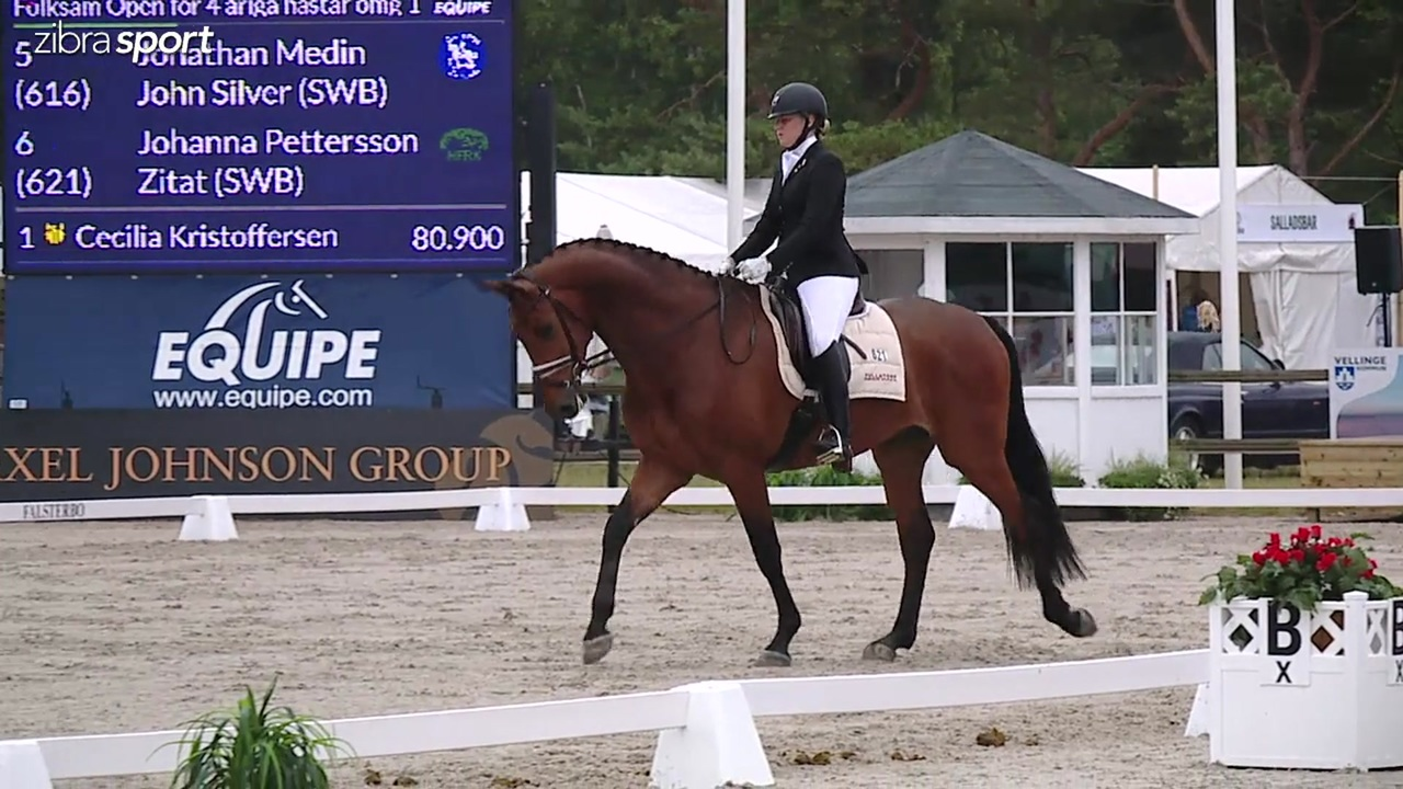 Folksam Open for 4 year horses at Falsterbo Horse Show 2017