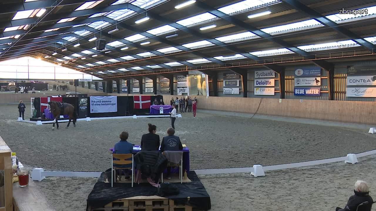 Se dag 2 ved DM/LM i voltigering fra Esbjerg og Omegns Rideklub