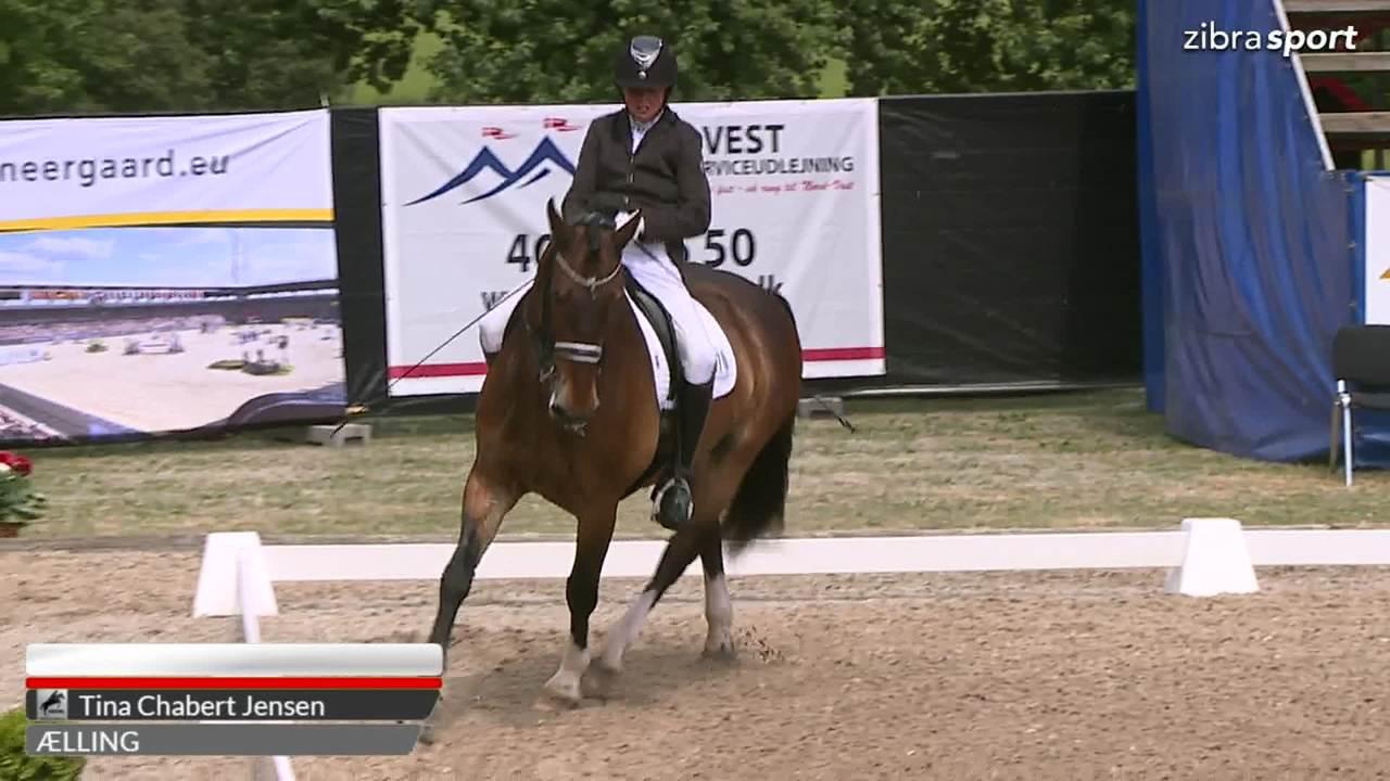 Se 2. afdeling af DM Paradressur Grad ll fra Broholm Horseshow 2018