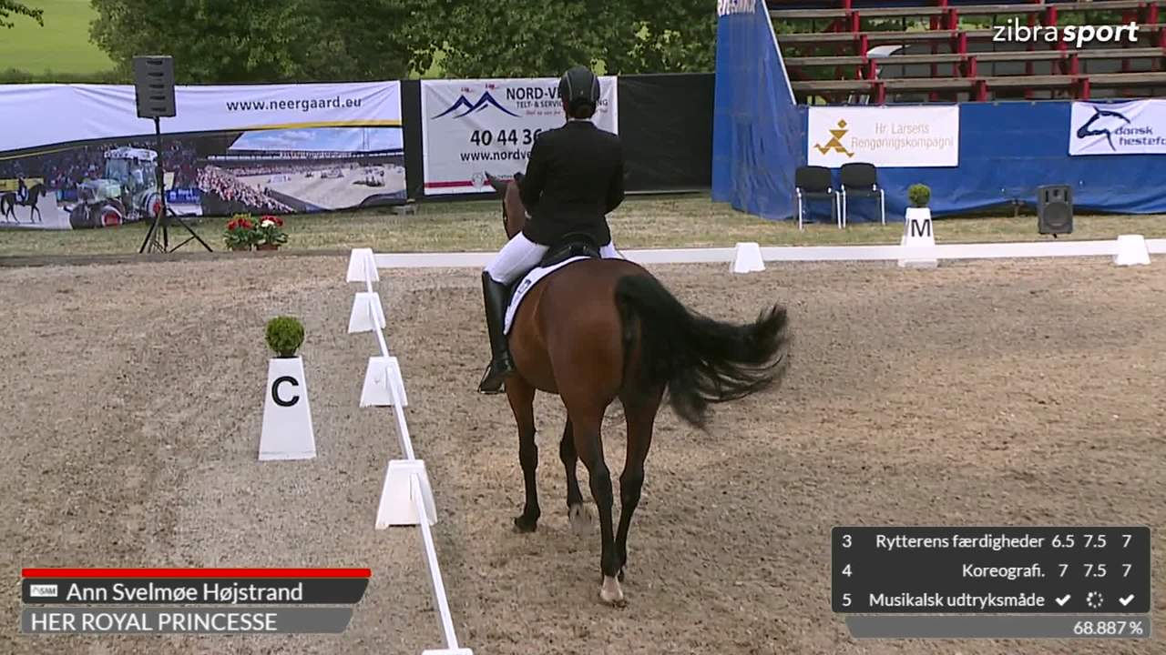 2nd part of the Danish championships in para dressage Grade V at Broholm Horseshow 2018