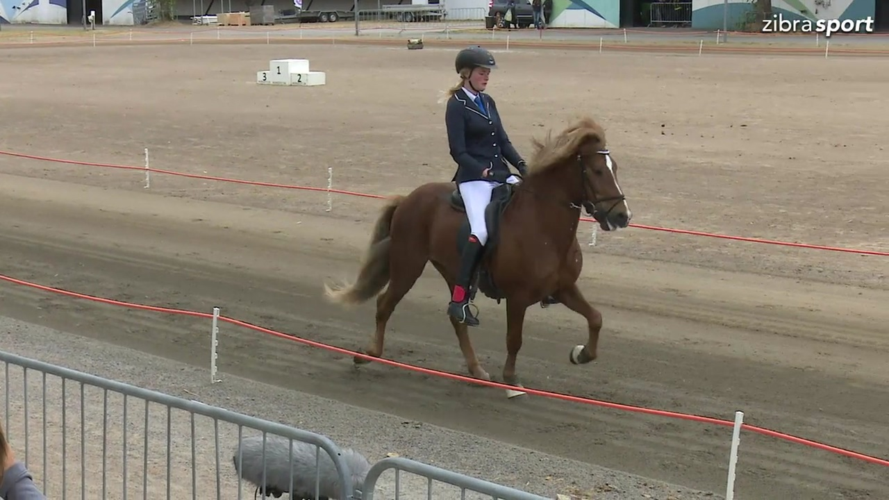 Young Adults Flokk GDY BFIN at the Danish Championship for Icelandic horses 2018