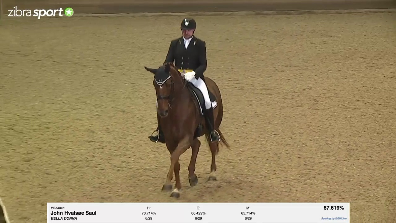 Se Bundgaard Byg Intermediare 1 heste 2015 ved 1. kval. af Bundgaard Byg Cup 2017 på Holte Rideklub