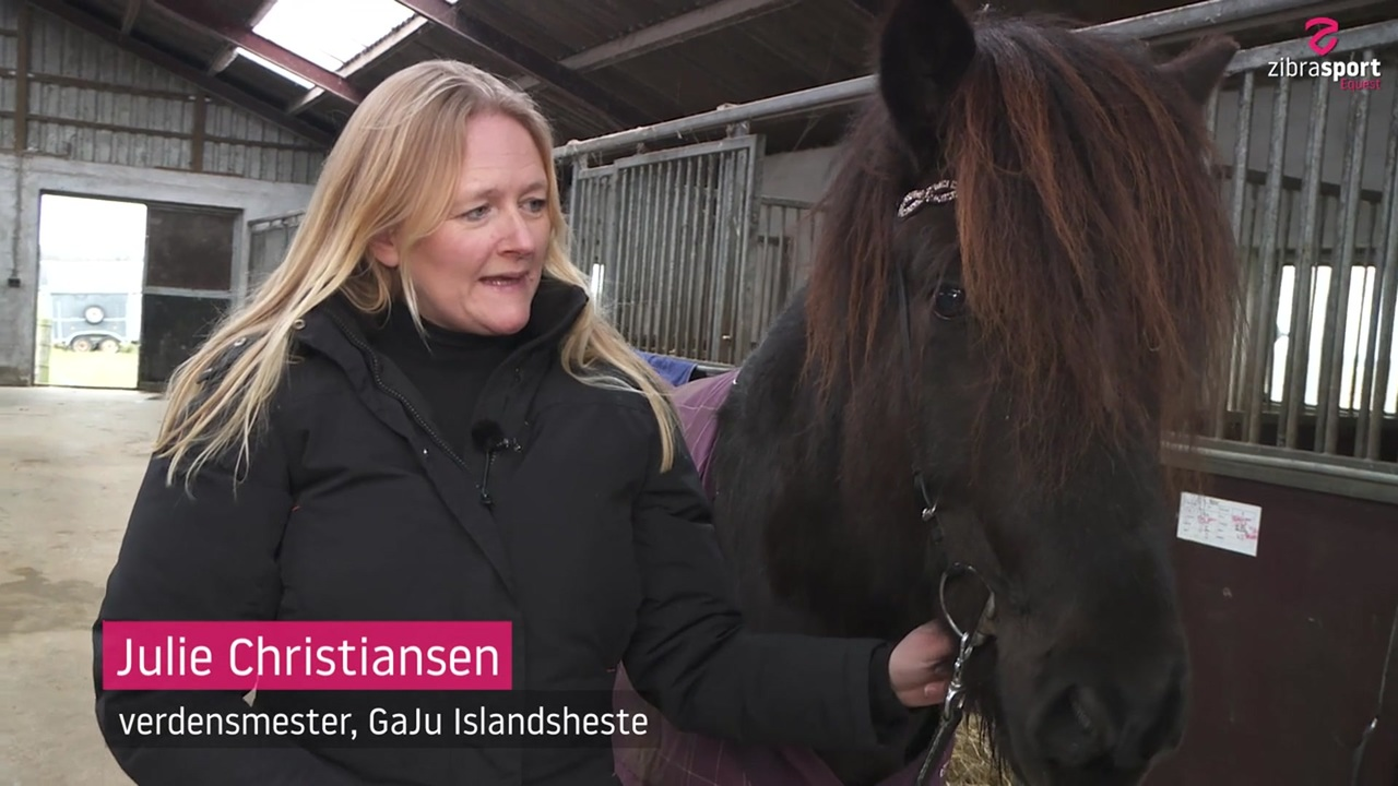 Julie Christiansen talks about the interesting young horse