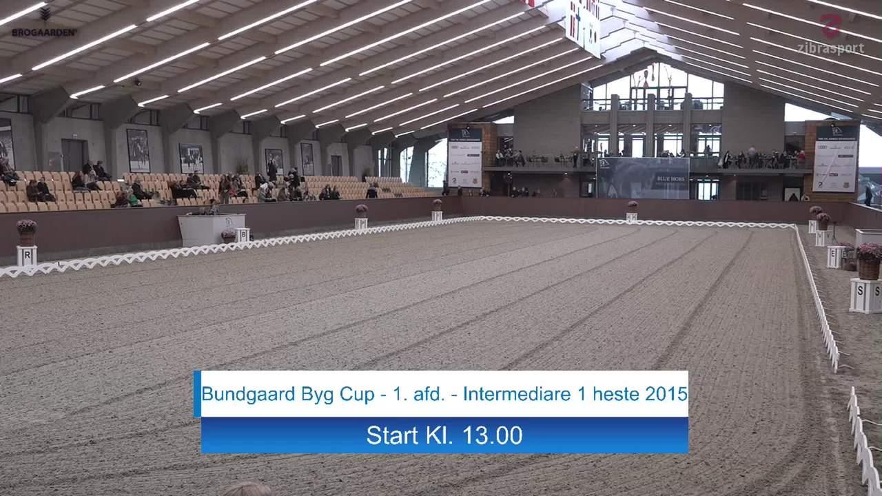 Bundgaard Byg Cup finale 1. afd. (Intermediare I) ved Blue Hors Dressurfestival 2019