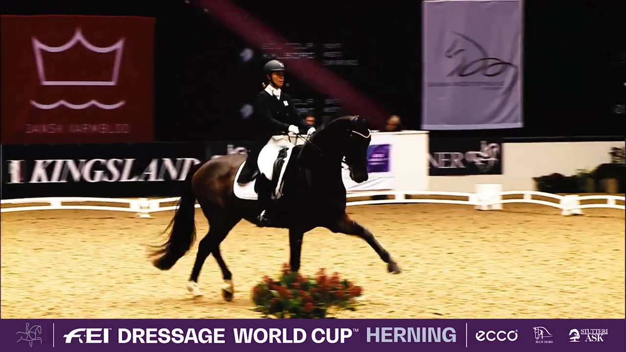 Ready for this year's World Cup Herning?