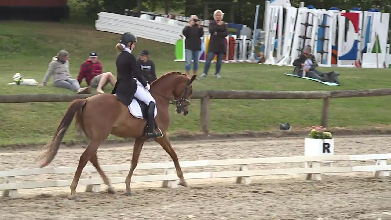 Junior and Youngrider dressage at the DRF Championship in eventing 2018