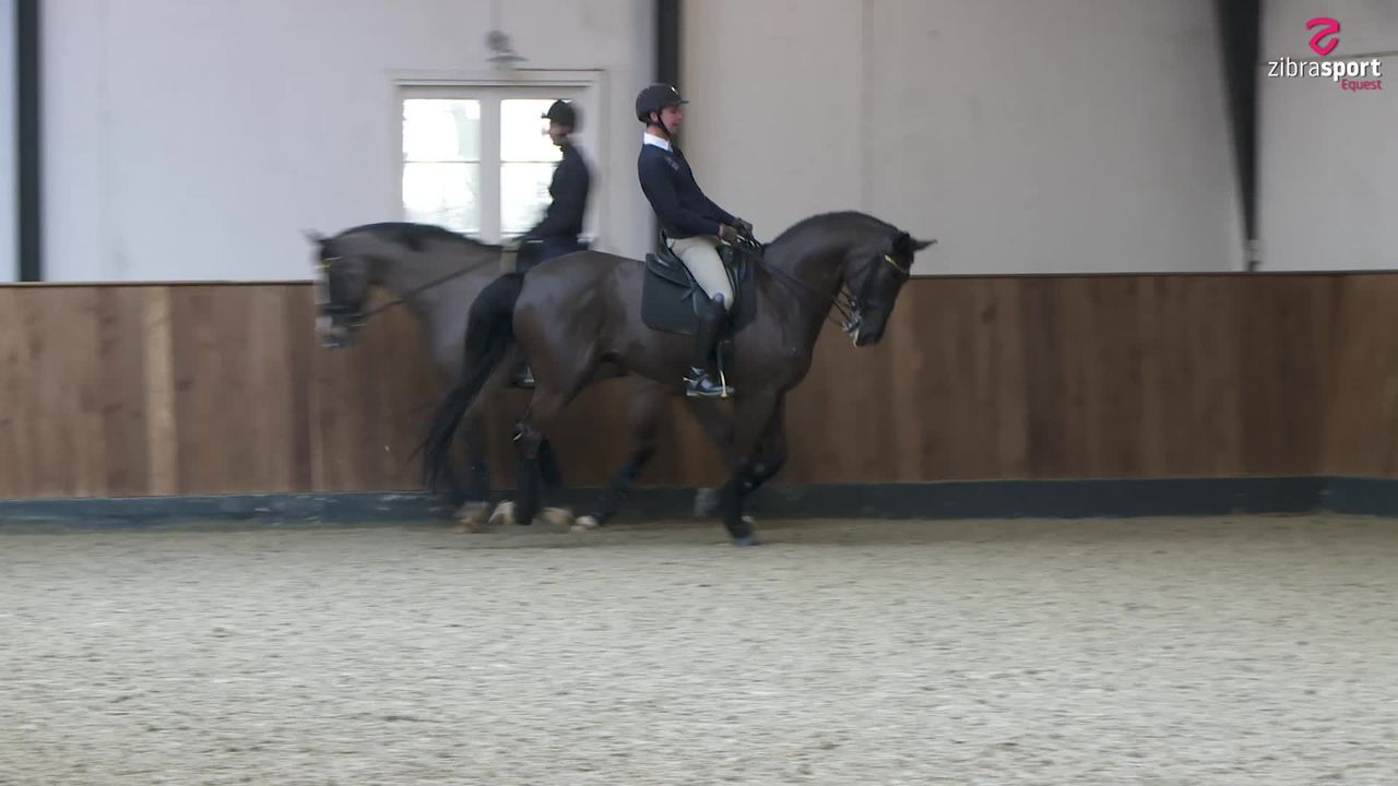 Tuesday Tips: How to make a canter pirouette