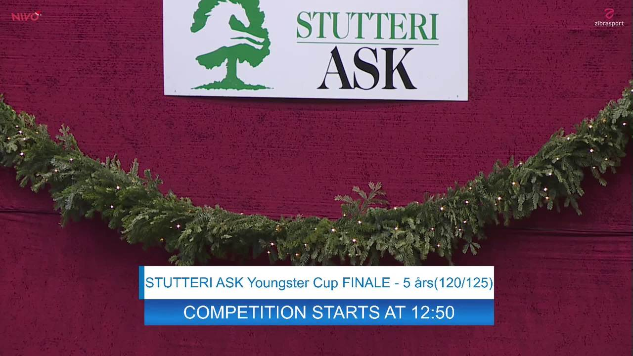 Youngster Cup finals for 5 and 6 yr-old horses at Danish Christmas Show 2019