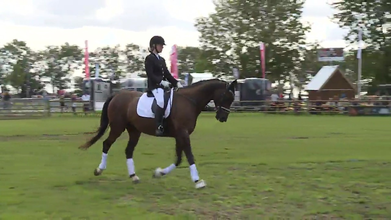 Clinic about horse insurance at Store Hestedag 2019