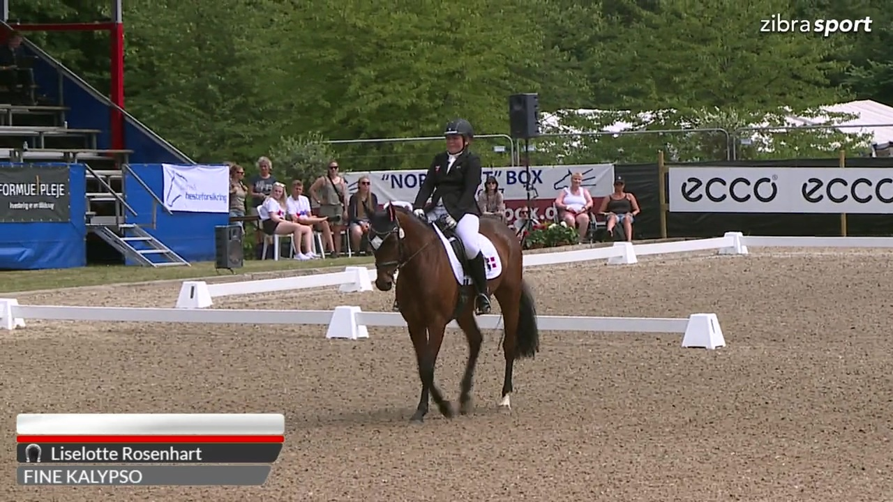 2nd part of the Danish championships in para dressage Grade 1 at Broholm Horseshow 2018