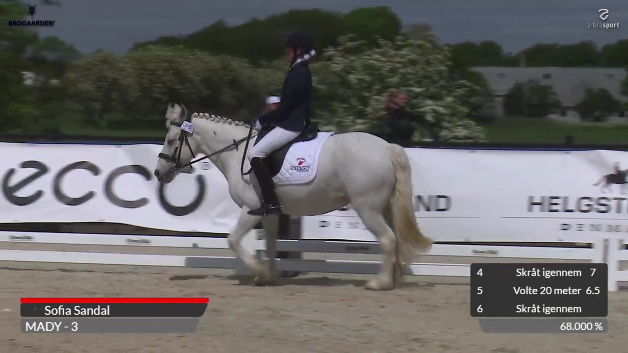 Watch the 2nd part of Elevskole Cup at Equitour Aalborg 2019