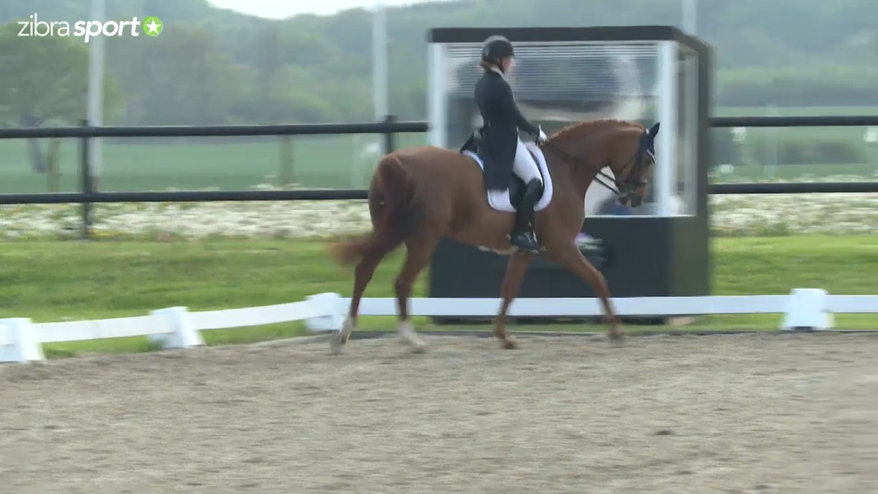 I.S.T's MA1-A at the 2nd qualifier for ECCO Cup 2017 at Hovgaard Rideklub