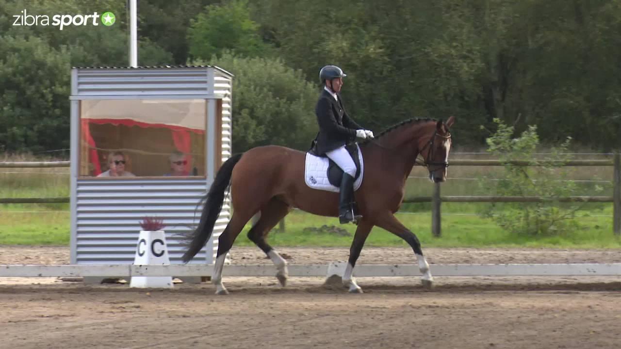 Dressurens Venner Cup Final at Herning Rideklub 2016
