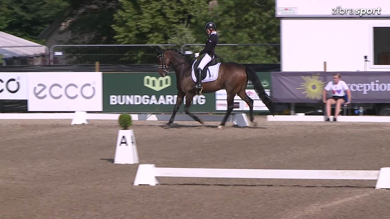 1st part of the Danish championships in para dressage Grade lll at Broholm Horseshow 2018