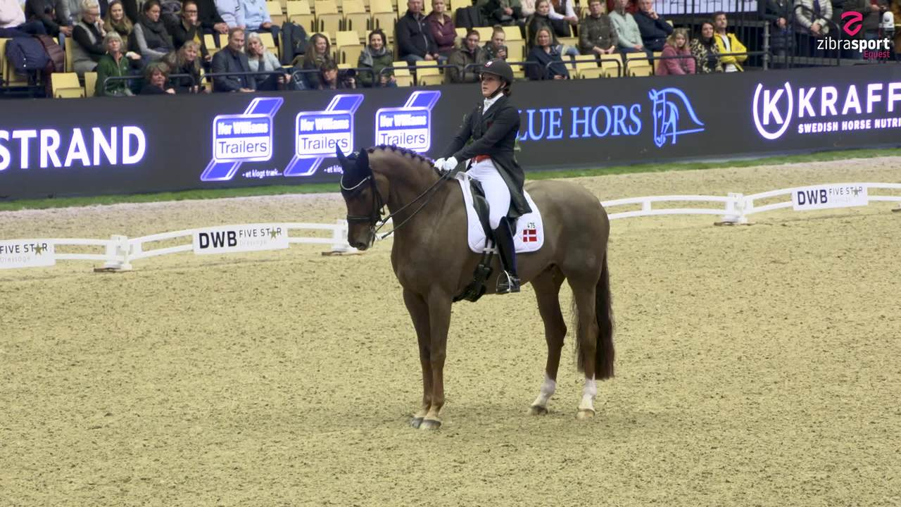 Cathrine Dufour and Bohemian's impressive ride in the Grand Prix at the Stallion Show in Herning 2020