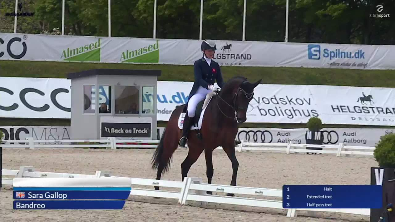 Grand Prix Special in Nations Cup at Equitour Aalborg