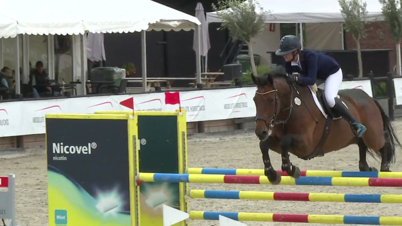 Trolle Company Silver Tour 125 cm at Sommersted FEI 2017
