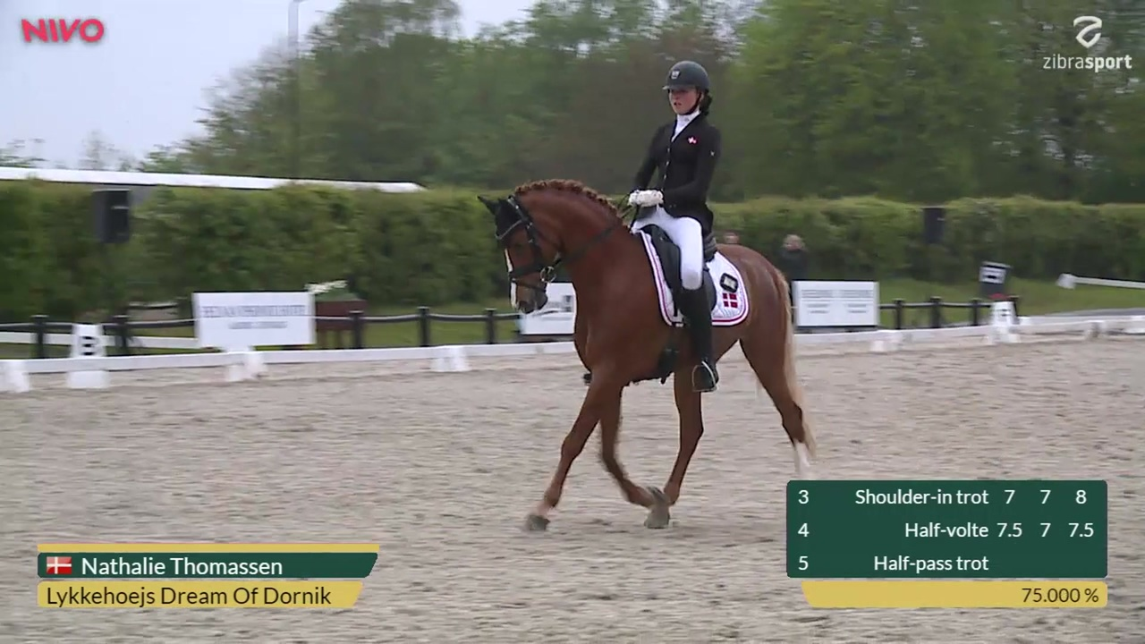 CDIP Pony Team Competition at Aalborg Dressage Event 2019