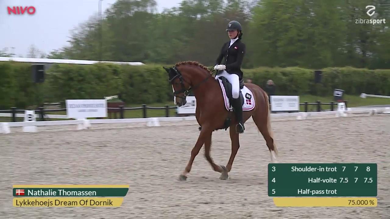 Se CDIP Pony Team Competition klassen fra Aalborg Dressage Event 2019