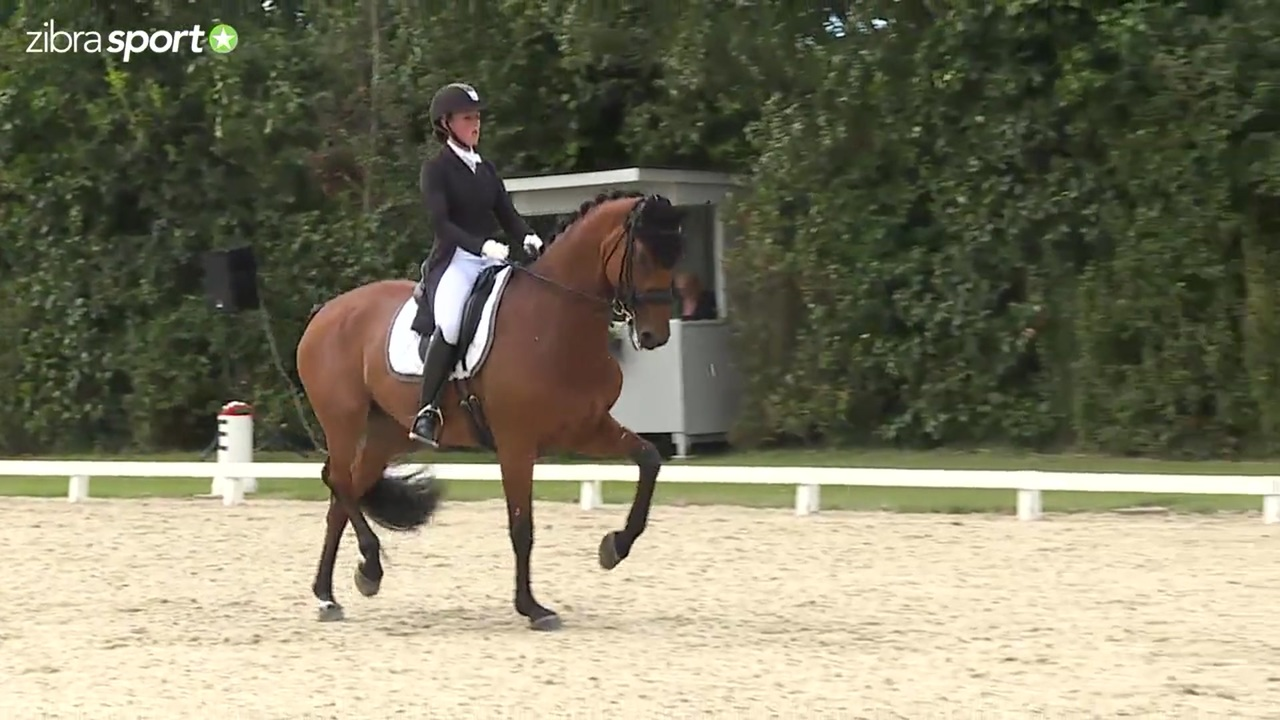 Grand Prix Freestyle at the final in the Danish U25 championships at the DRF championship at Ringsted Sports Rideklub 2016