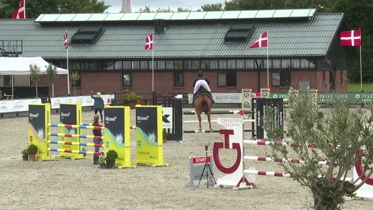 Se Zibra Sports Youngster ved Sommersted FEI 2017