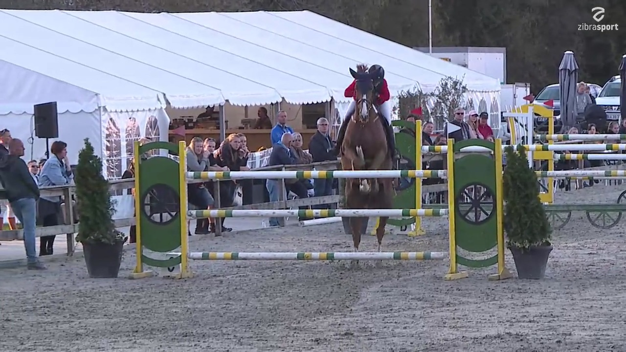 S1* (145 cm) at Riders Cup 2019