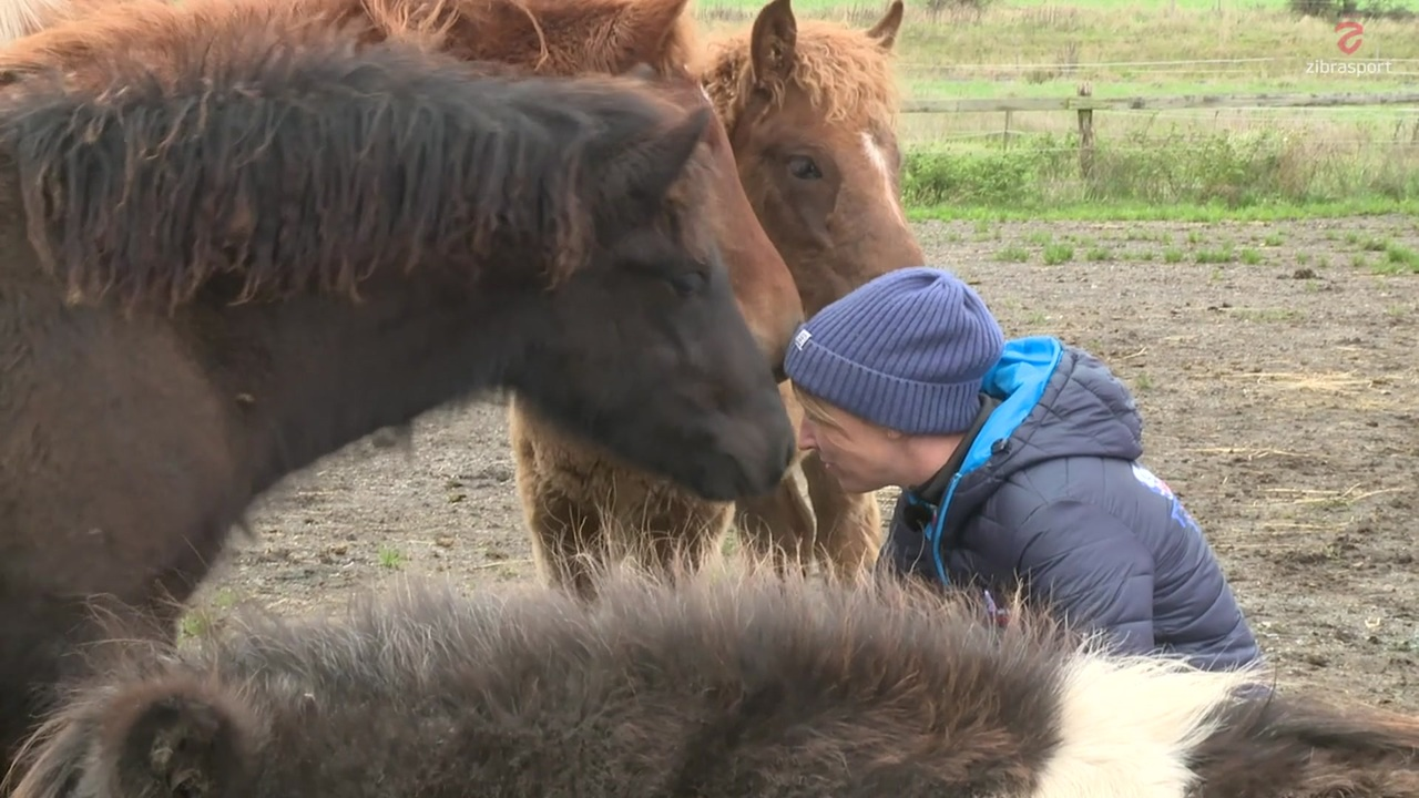 Vet Charlotte Cook talks about breeding and the future of the icelandic horse