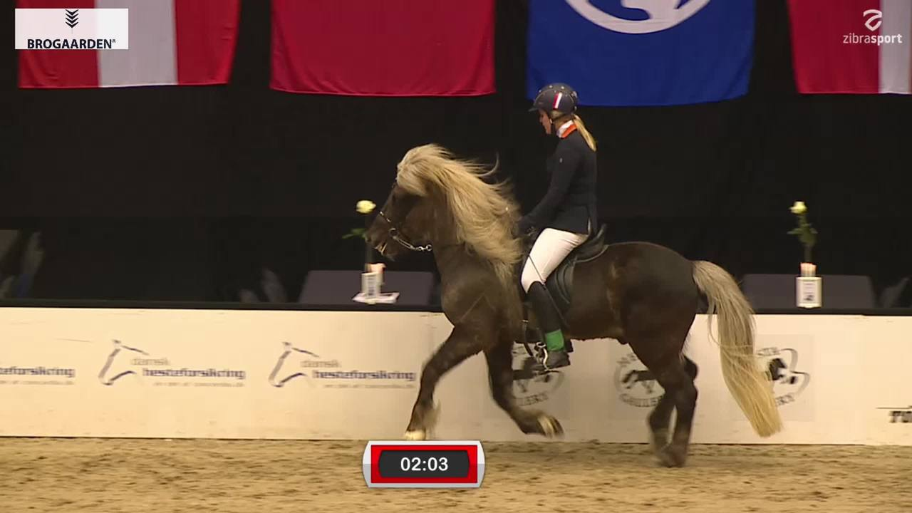 Youth Match Five Gaits,  World Tölt 2019