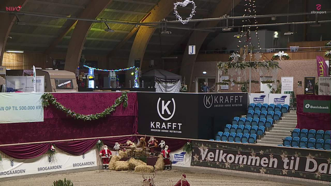 AB RIDEUDSTYR LB1* (75 cm) ved Christmas Show Warm Up for pony 2019