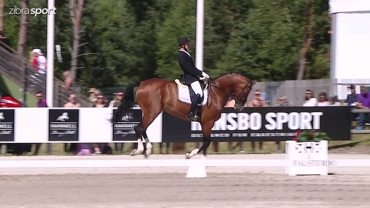 6 year final at Falsterbo Horse Show 2017
