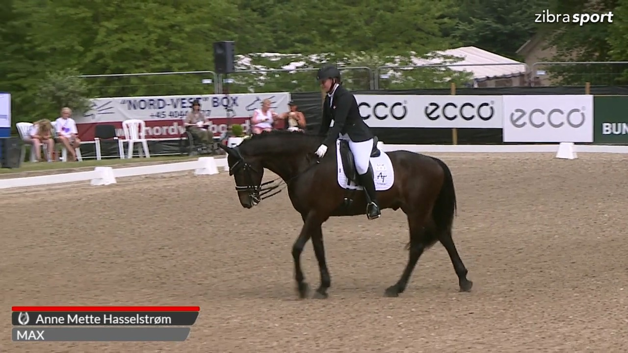 2nd part of the Danish championship in para dressage Grade IV at Broholm Horseshow 2018