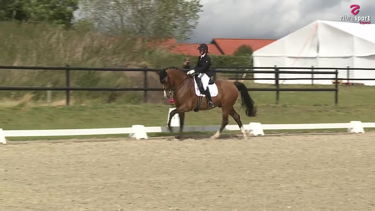 Agria DRF Mesterskab for klubhold Finale MB2
