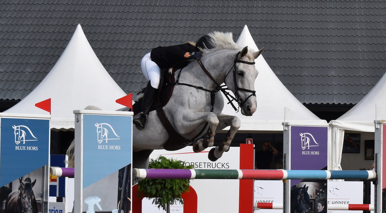 Danish Championship in Jumping – Absolute Horses