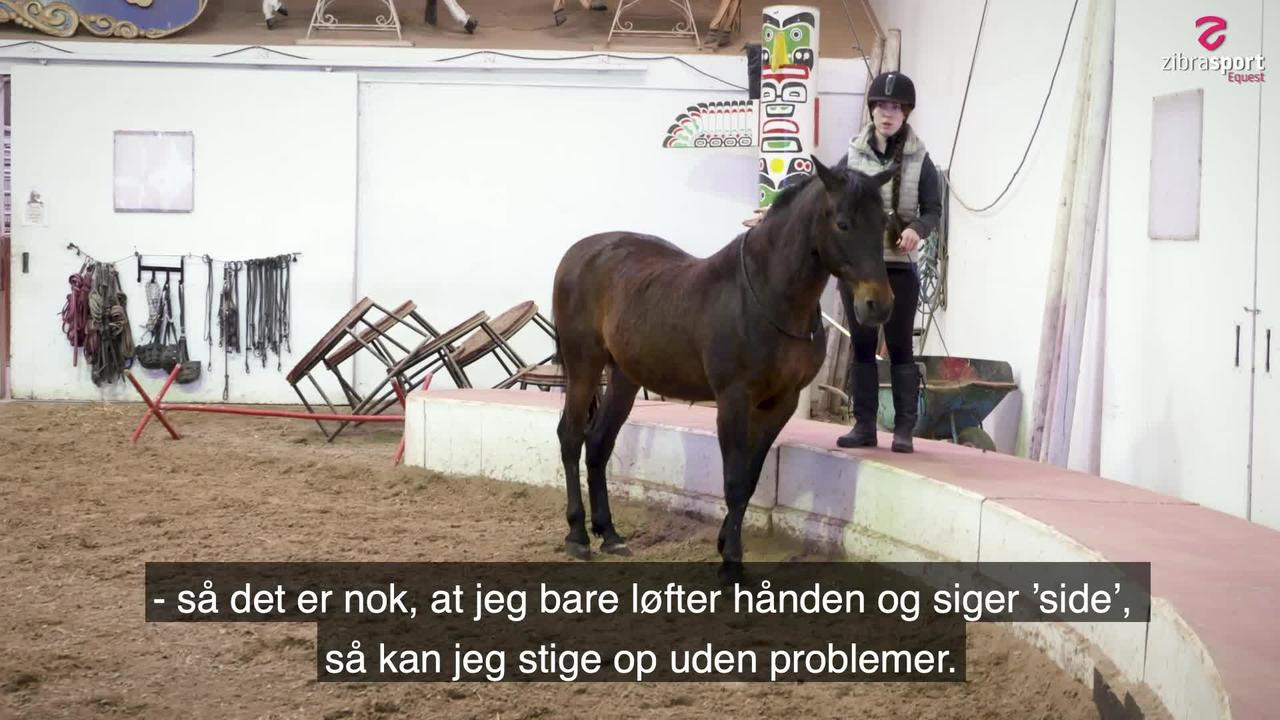 Teach your horse to 'park out'
