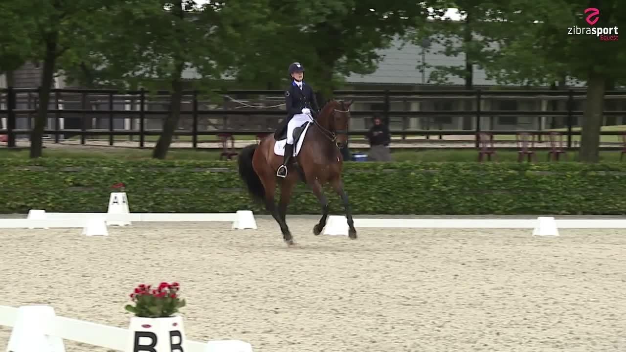 UVM udtagelse for 7 års heste – finaleprogram